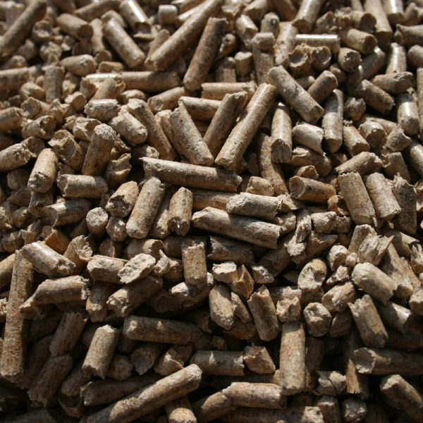 Pellets close up