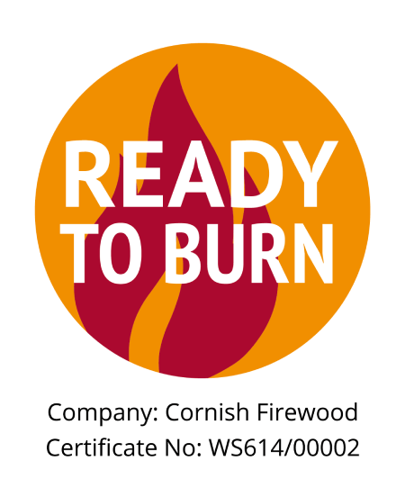 Ready to Burn - Kindling